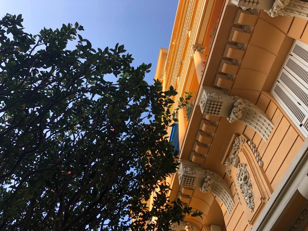Apartment For Sale at 49 Rue Grimaldi in Jardin Exotique - 2 Photos